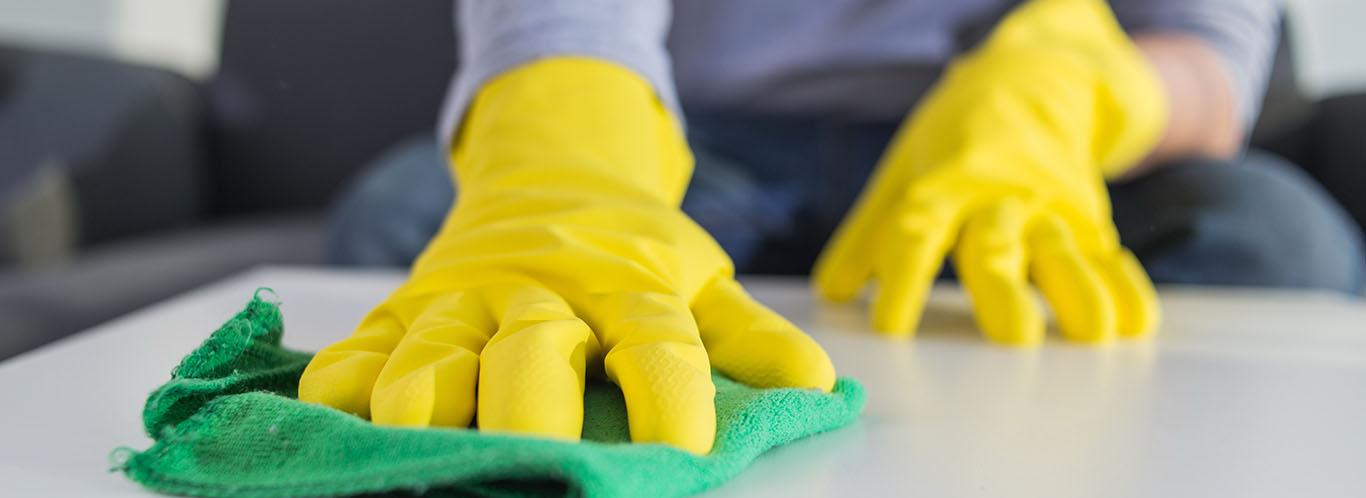<small>Podkarpacie</small>Usługi sprzątania
